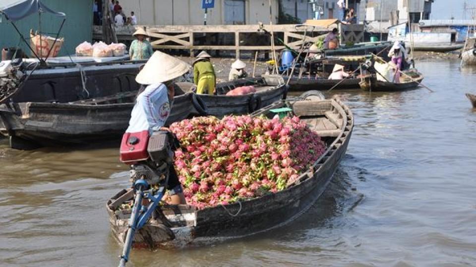 Delta del Mekong mercato galleggiante
