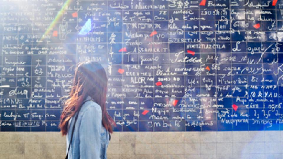 Le mur des je t'aime a Parigi – ph Iamhao