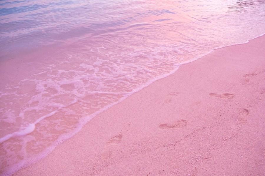 Impronte sulla sabbia rosa di Pink Sand Island
