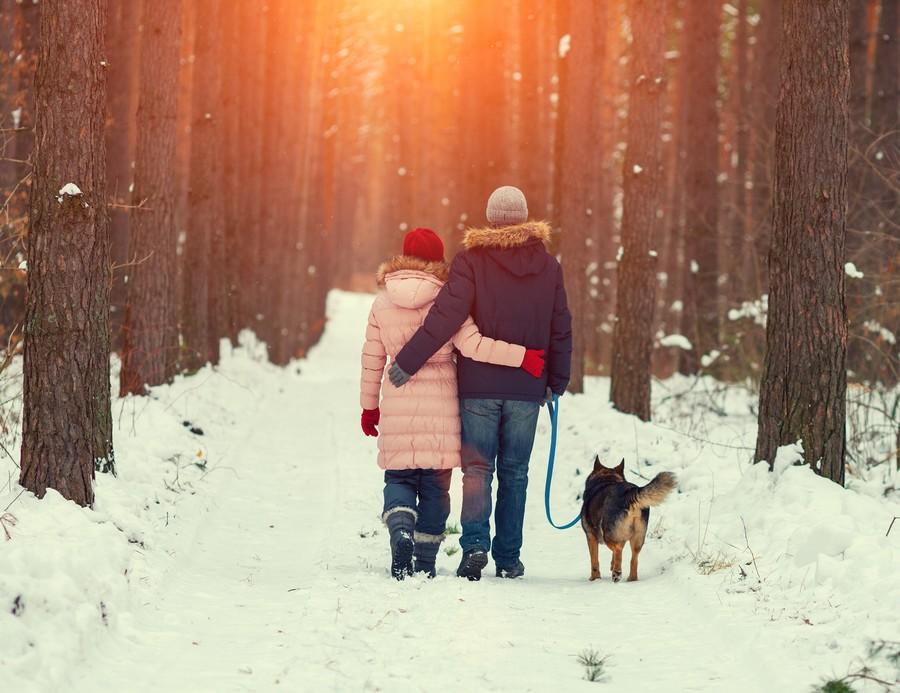Vacanze invernali in montagna con il cane