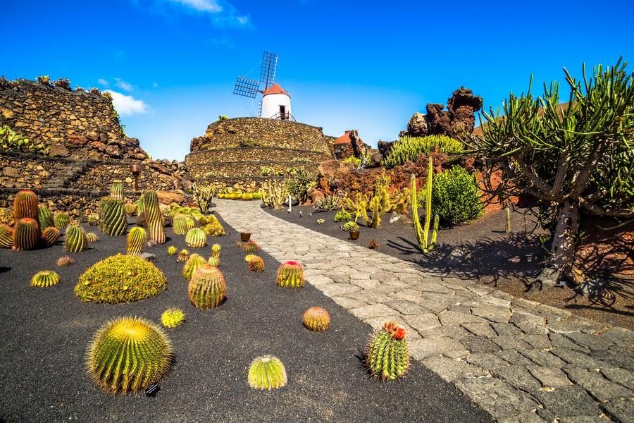 Giardino di cactus a Lanzarote