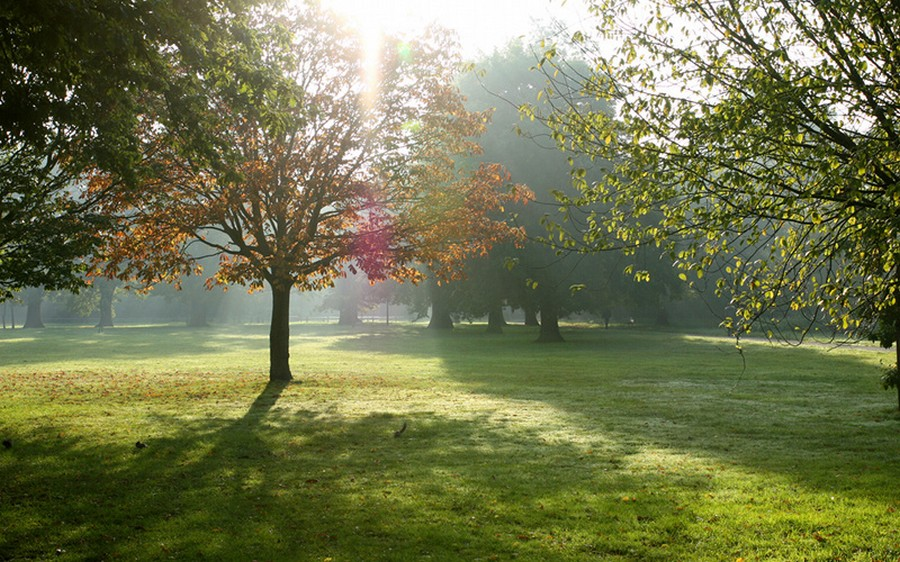 Tooting Common © Simoncarlwallace - Creative Commons Attribution-Share Alike 4.0 International license.