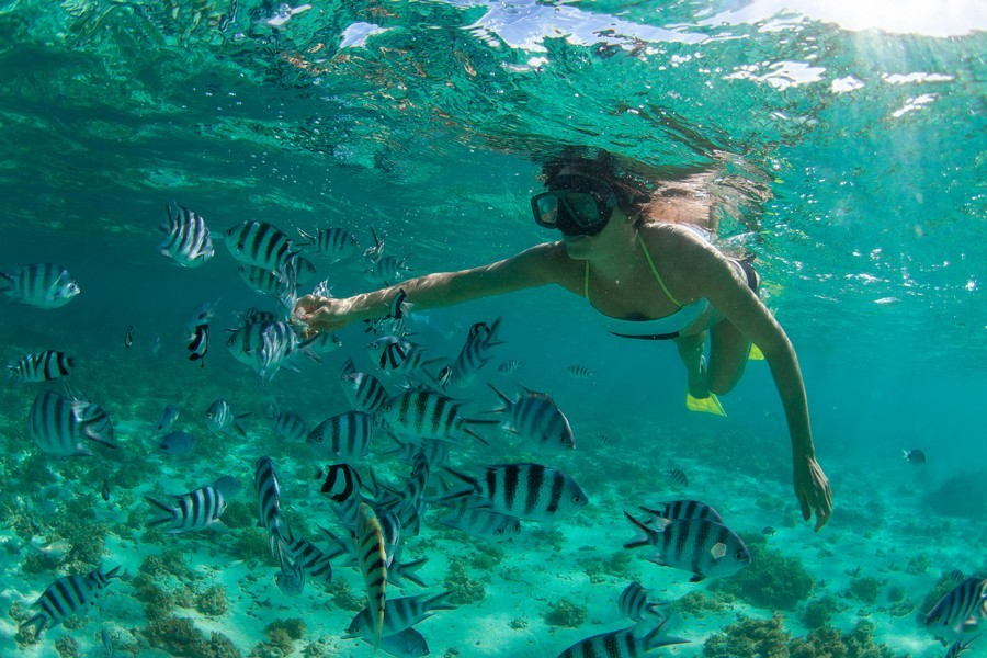 Snorkeling a Mauritius
