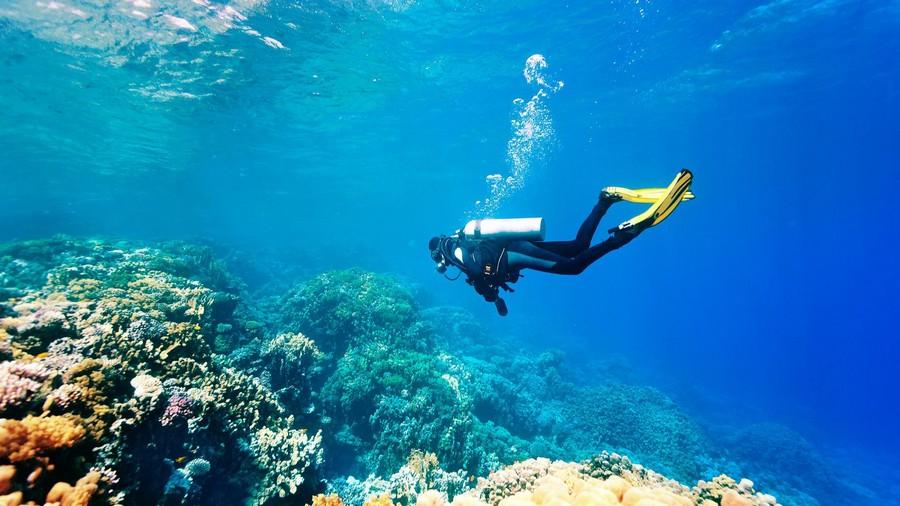 Viaggi diving alle Maldive