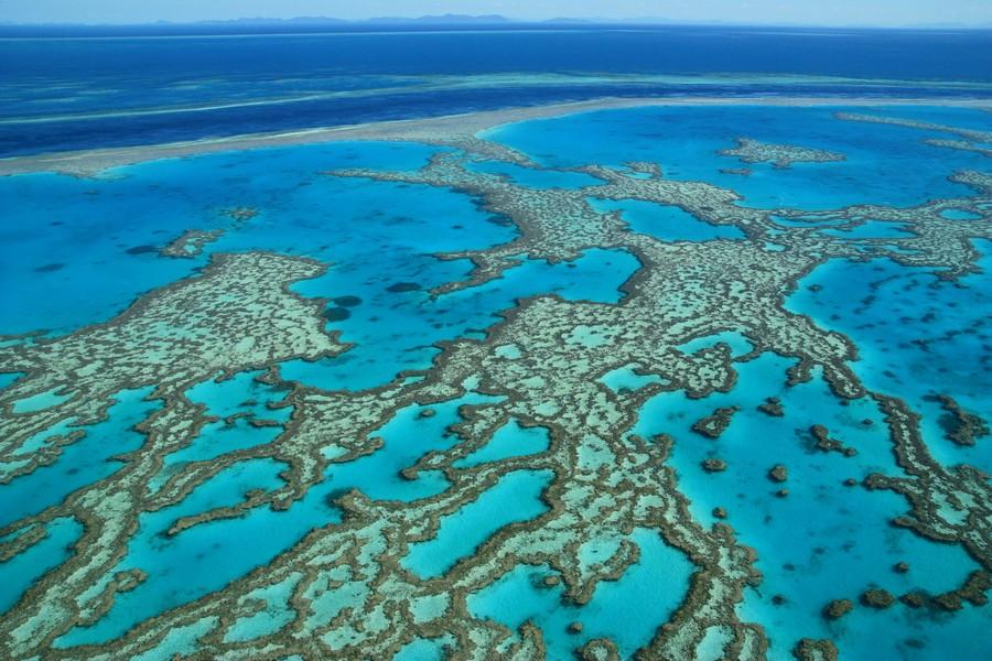 Grande barriera corellina in Australia