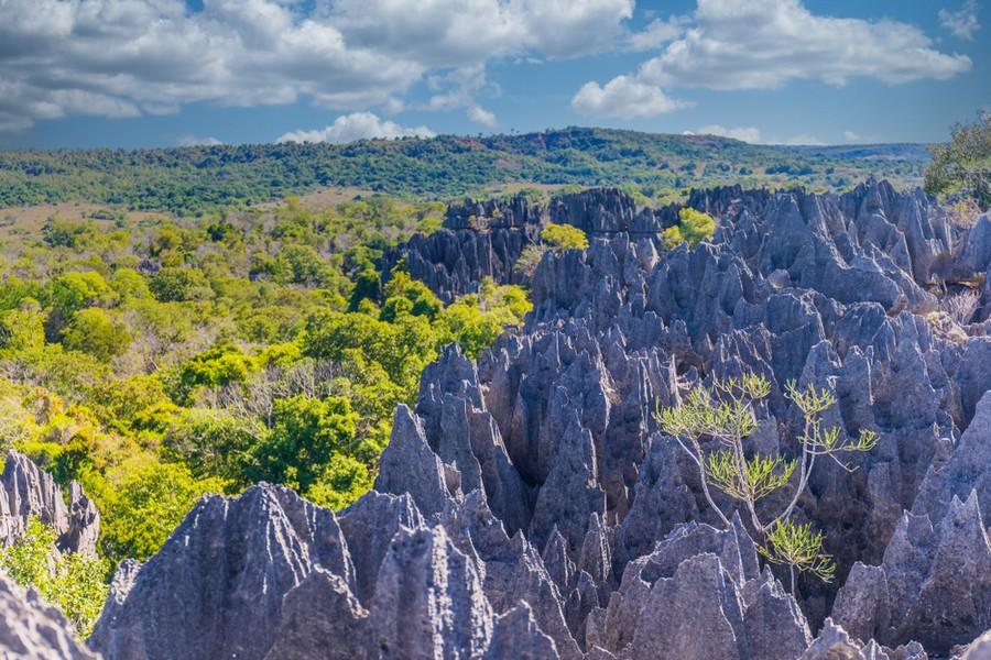 Parco Tsingy di Bemaraha