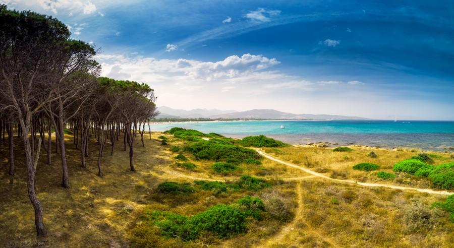 Budoni, Sardegna: tratto di spiaggia nei pressi della pineta