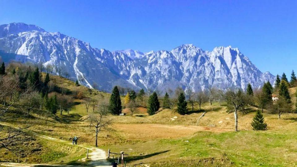 Un tratto del Sentiero dei Grandi Alberi, sulle Piccole Dolomiti venete